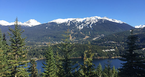 How did Whistler B.C. get its name?
