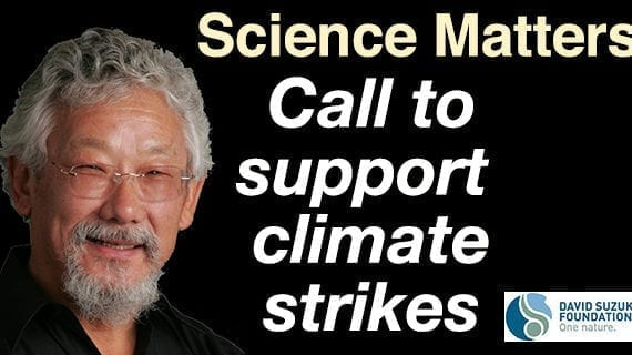 Let's all support the global climate strikes!