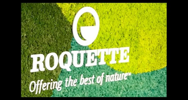 Roquette appoints new vice-president of its pea and new proteins business line