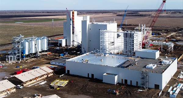 Investment to further pea and fava bean processing on the prairies