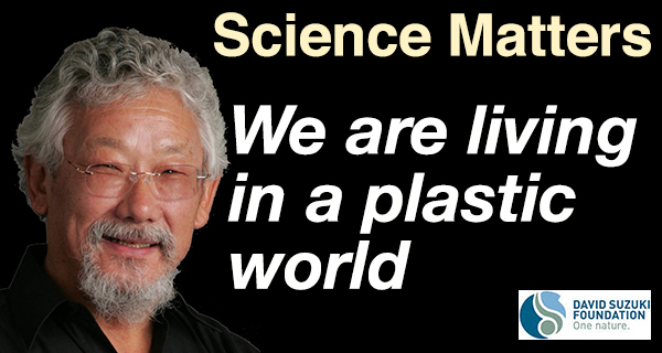 We are living in a plastic world