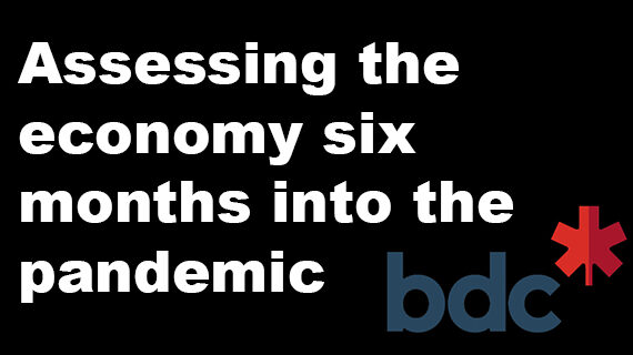 Assessing the economy sixmonths into the pandemic