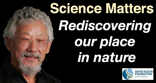 Rediscovering our place in nature