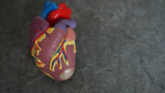 Potential new treatments for cardiovascular disease